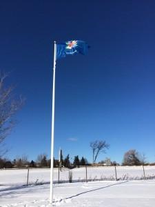 Blue Canada 150 flag flying on flagpole.