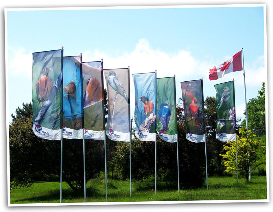 Flags Unlimited's RotoArm banners all in row.