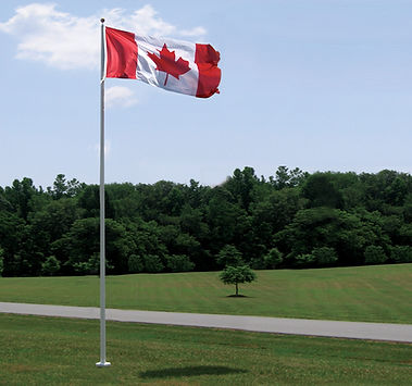 Commercail fiberglass flagpole flying in a park.