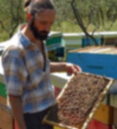 Miele biologico Apicoltura Giovannetti