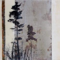 """Peace Tree"""