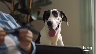 Beko - Best Mates Together / The Dog