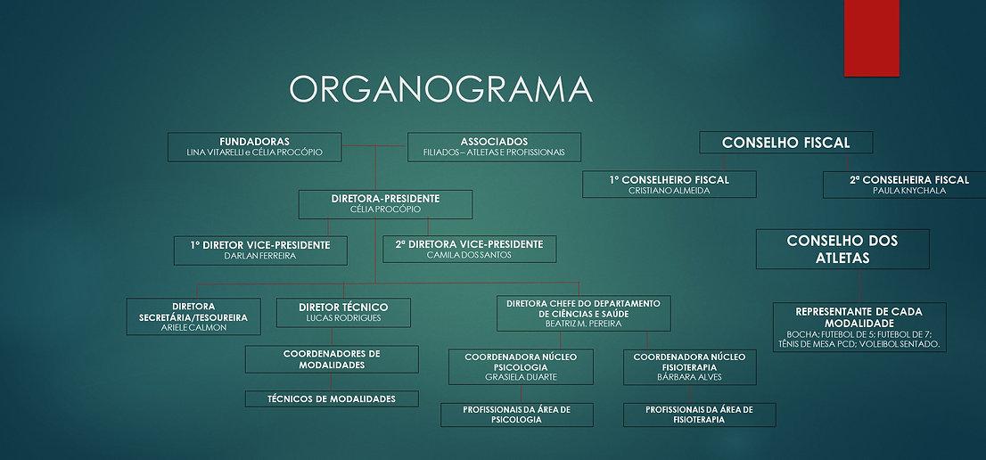 ORGANOGRAMA 2019.JPG