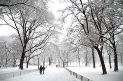 Snow More Tetzloff (1)-001.JPG