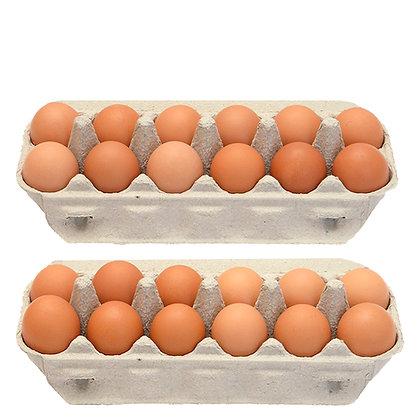 Burd Eggs / 2 Dozen / 24 Free Range Eggs / 700g Cartons
