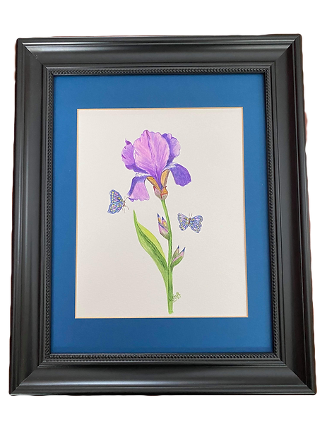 This is a one of a kind Mouth Painted Image by Nancy Hall. Click on the image to see it larger.  This Image can not be used for reproductions. It is a beatiful picture of an Iris with 2 buterflies in a black frame with blue matting.