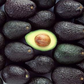 Avocado: una moda insostenibile