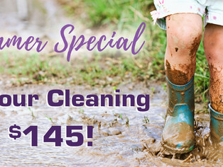 Summer Cleaning Special!
