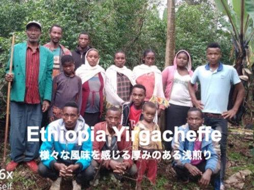 エチオピア イルガチェッフェ G-1 シフェラウ・バントラ ナチュラル