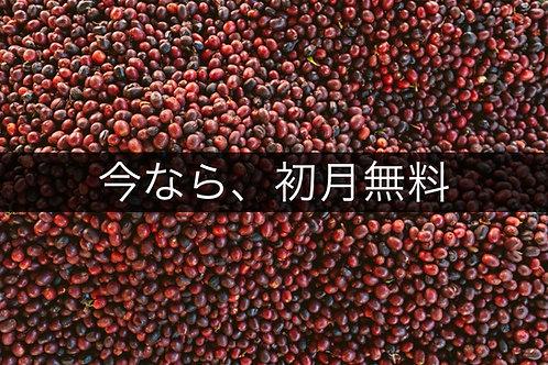 浅&中煎りコース(3袋サービス)