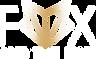 fox hair Logo transparent image.png