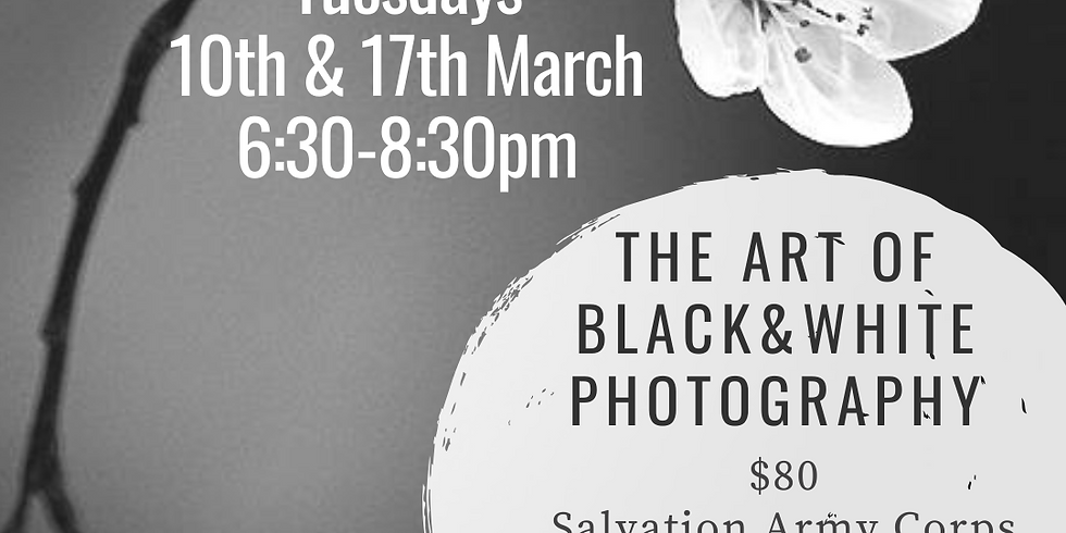 The Art of B&W  2 sessions
