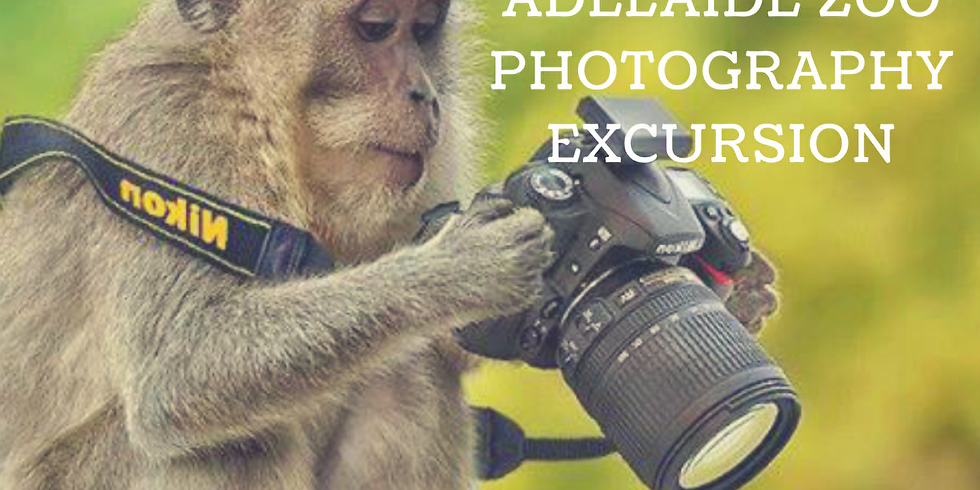 Adelaide Zoo Photography Excursion