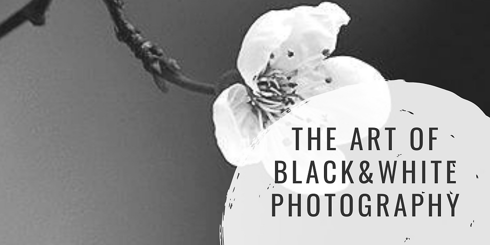The Art of Black&White Photography