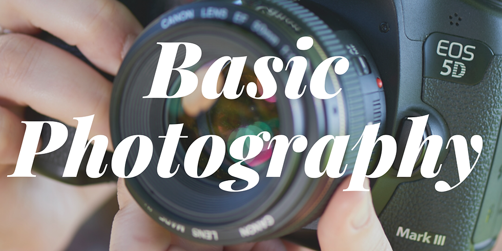 Basic Photography  (4 sessions)