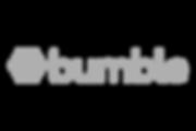 bumble-logo-300x200.png