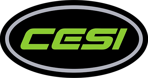 CESI Sticker Logo_edited.png