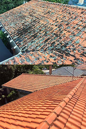 roof cleaning repairs perth