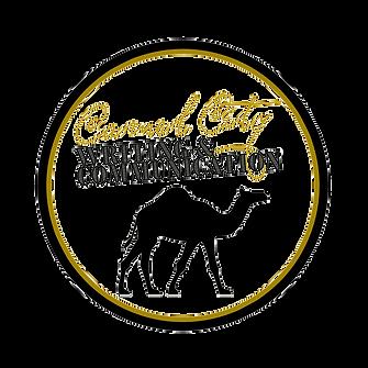 camel%20city%20writing%20logo_edited.png