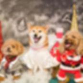 KBS Christmas.jpg