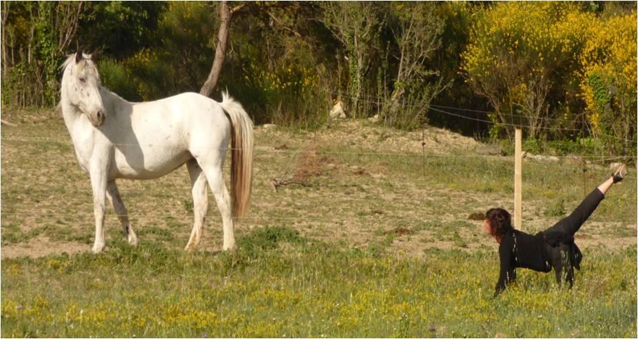 emi + cheval