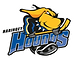Hounds Logo - no back.png