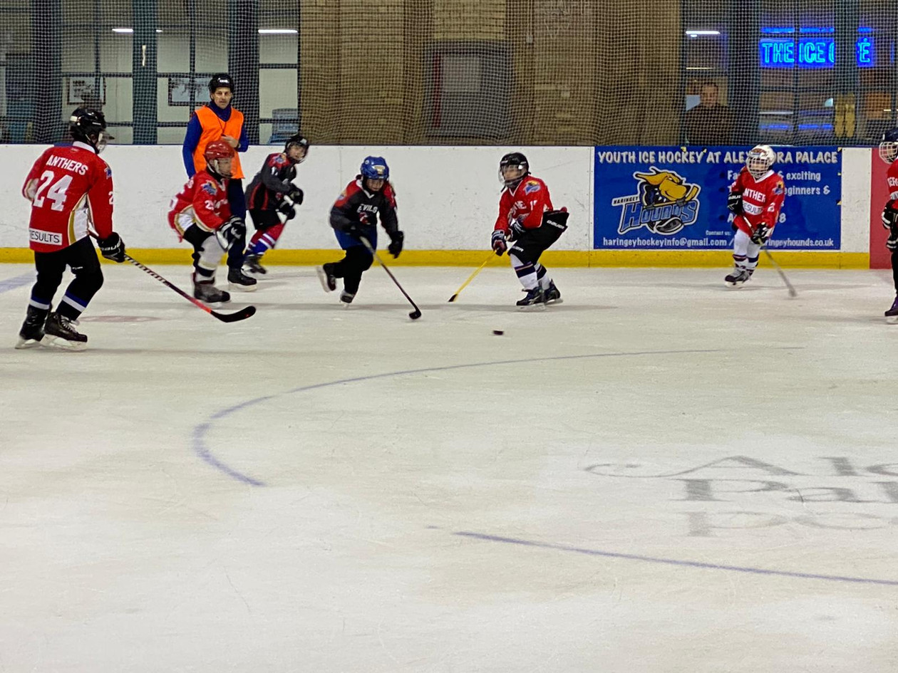 Devils vs Panthers 23.02.2020