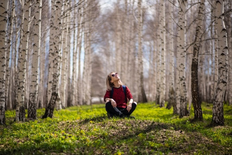 Research has shown the health benefits of 'forest bathing', the act of being among the trees.