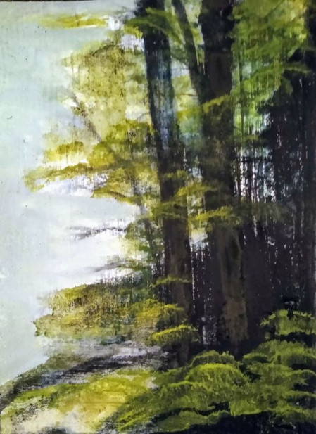 Trees in NH by Squam Lake.jpg