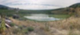 W2_Kailay Pond Enhancement Site lg.jpg