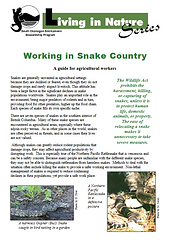 Working In Snake Country.png