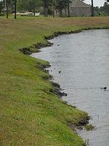 riparian shoreline erosion