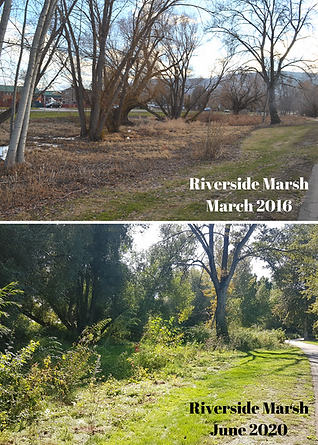Riverside 2016-20 before and afters.png