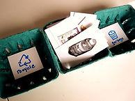 recycling_edited.jpg