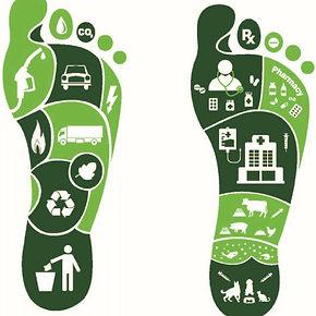 A-conceptual-figure-for-carbon-footprint