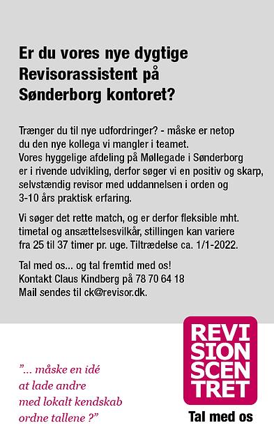 Stillingsannonce_opslag til egen web_revisor_RC_Sønderborg_januar 2022.png