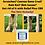 Thumbnail: The Skin Remedy | CBD For Horses