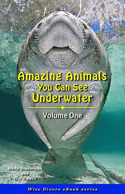 Cover_Amazing_Animals_06_11_21.jpg