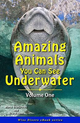 Cover_Amazing Animals Updated 080221.jpg