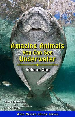 Cover_Amazing Animals copy.jpg