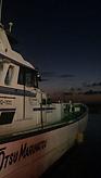 大津港の真アジ釣り。初心者の方にもおすすめです。