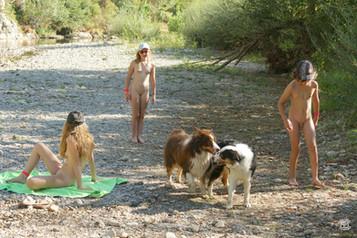 Avec bergers australiens 04