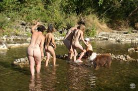 Avec bergers australiens 09