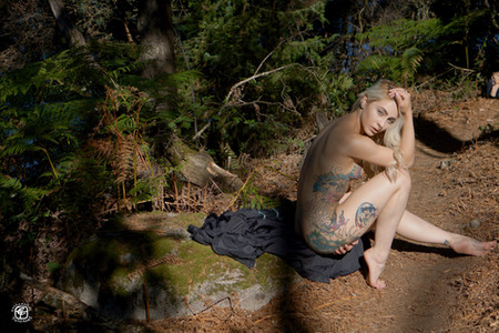 Tatouages dans la forêt - 05