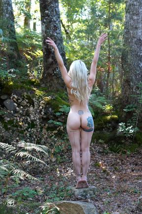 Tatouages dans la forêt - 09