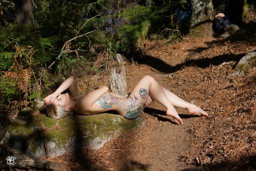 Tatouages dans la forêt - 03