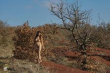 05_-_Laura_-_Cordes_Sur_Ciel_-_Décembre_