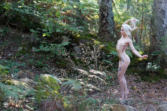 Tatouages dans la forêt - 11