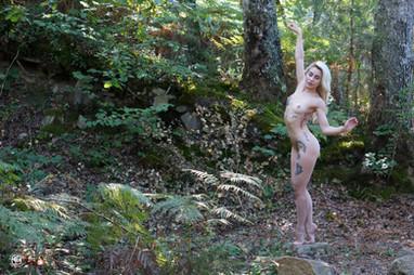 Tatouages dans la forêt - 12