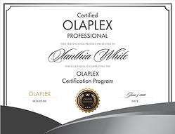 Olaplex Certificate